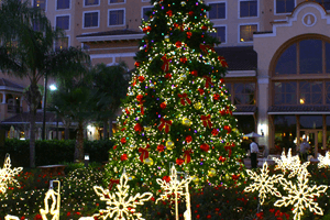Christmas Tree Rosen Hotels