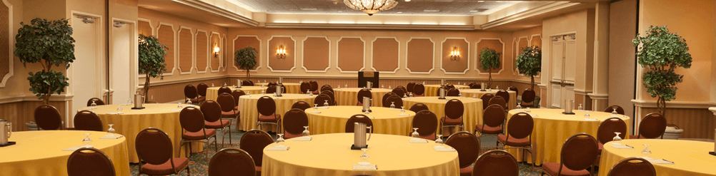 Rosen Plaza® Meeting Room